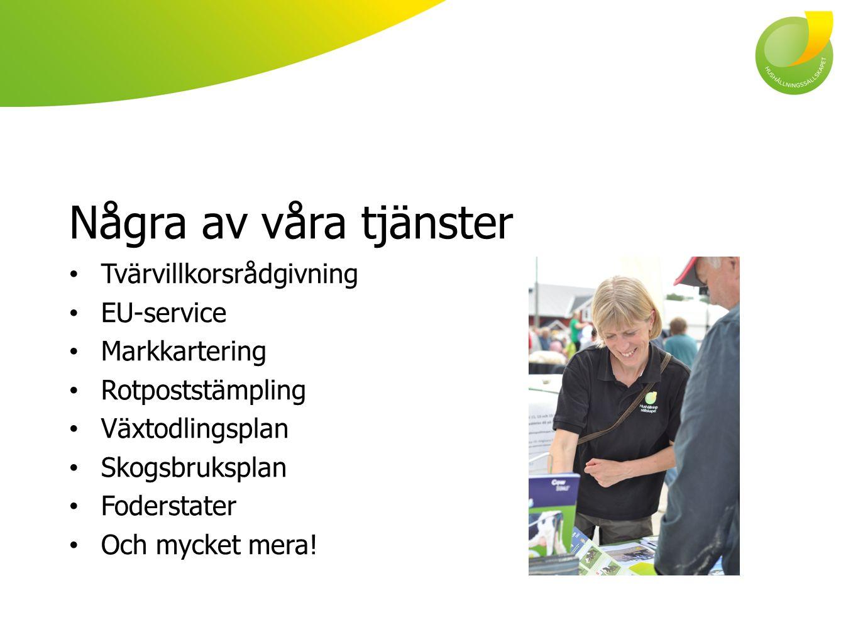 Några av våra tjänster Tvärvillkorsrådgivning EU-service Markkartering