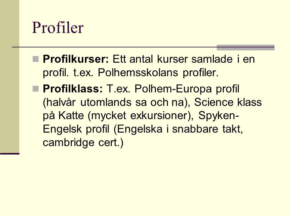 Profiler Profilkurser: Ett antal kurser samlade i en profil. t.ex. Polhemsskolans profiler.