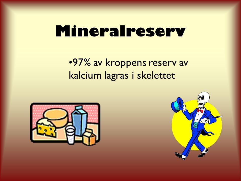 Mineralreserv 97% av kroppens reserv av kalcium lagras i skelettet