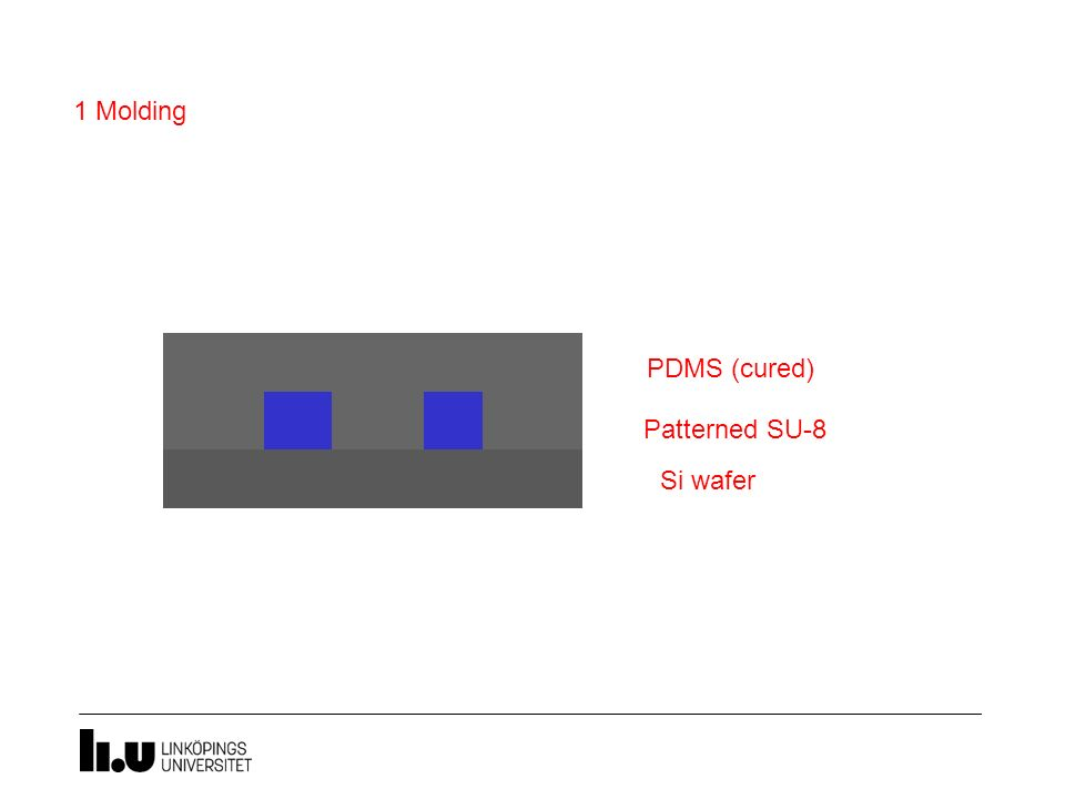 1 Molding PDMS (uncured) PDMS (cured) Patterned SU-8 Si wafer
