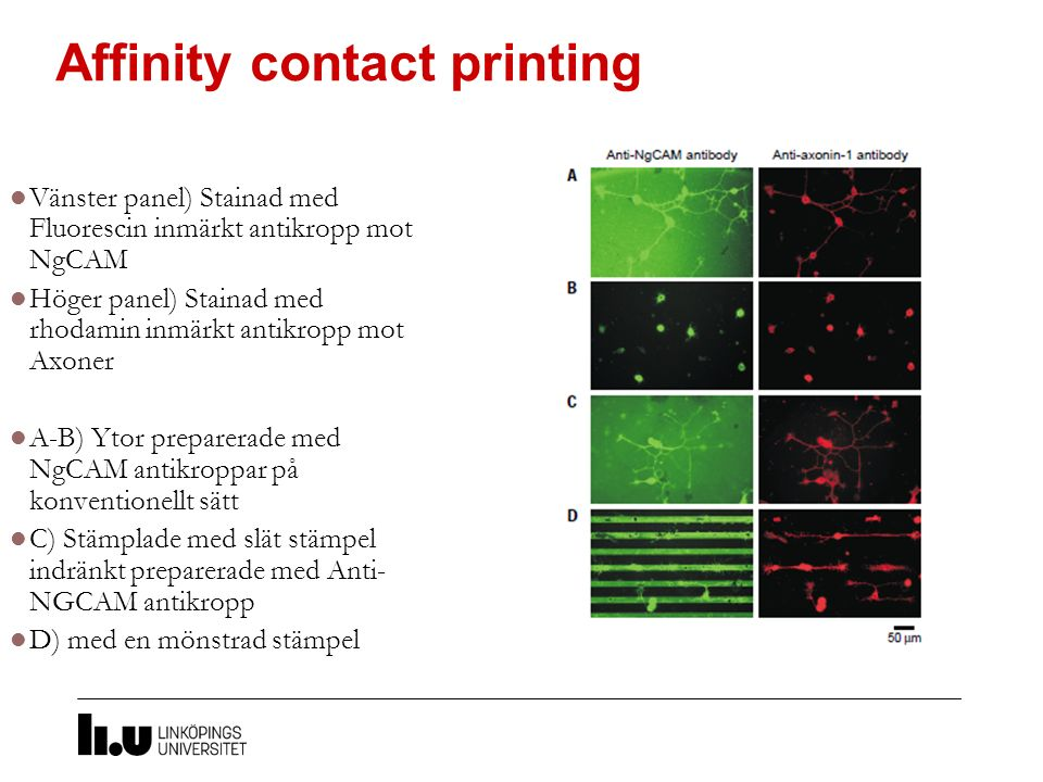 Affinity contact printing