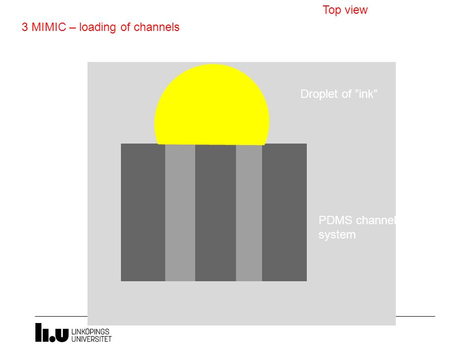 Top view 3 MIMIC – loading of channels Droplet of ink PDMS channel system