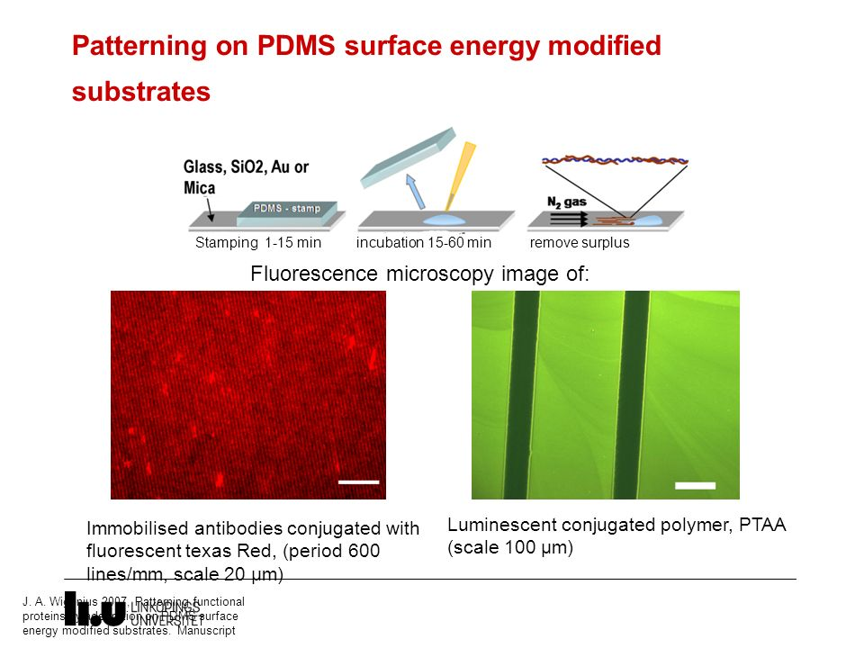 Patterning on PDMS surface energy modified substrates