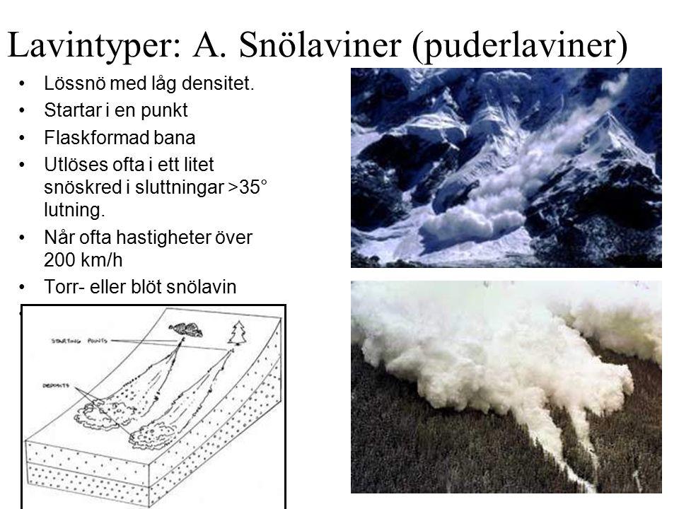 Lavintyper: A. Snölaviner (puderlaviner)