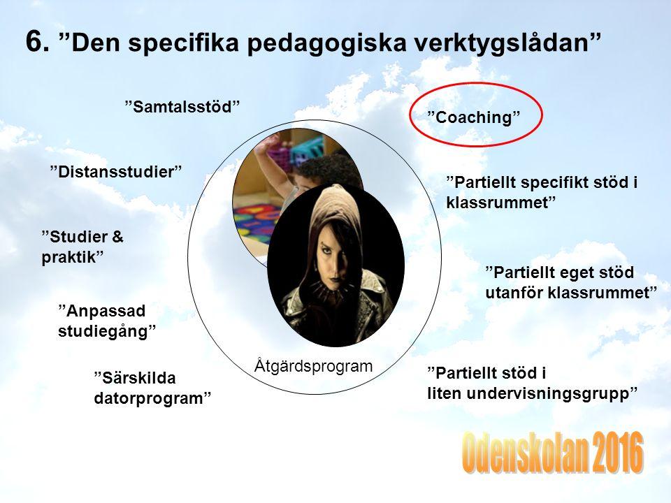 6. Den specifika pedagogiska verktygslådan