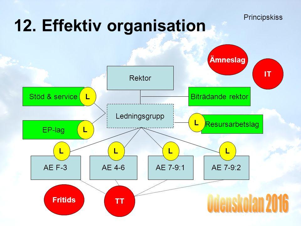 12. Effektiv organisation