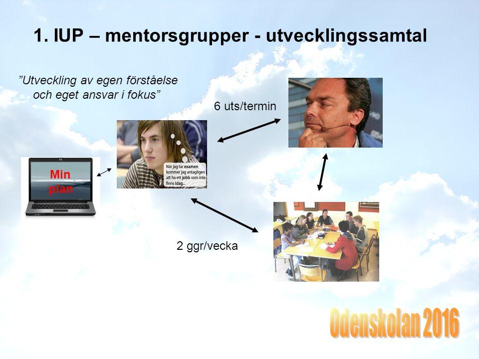 1. IUP – mentorsgrupper - utvecklingssamtal