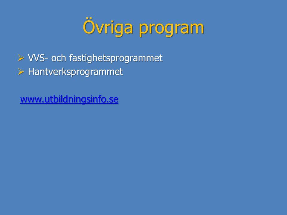 Övriga program VVS- och fastighetsprogrammet Hantverksprogrammet