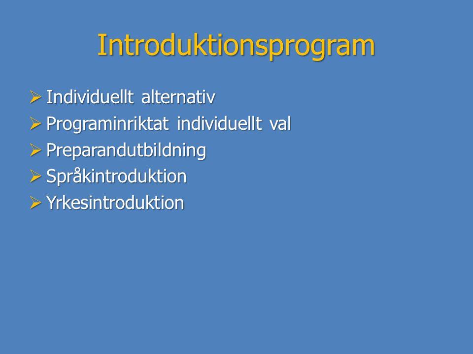 Introduktionsprogram