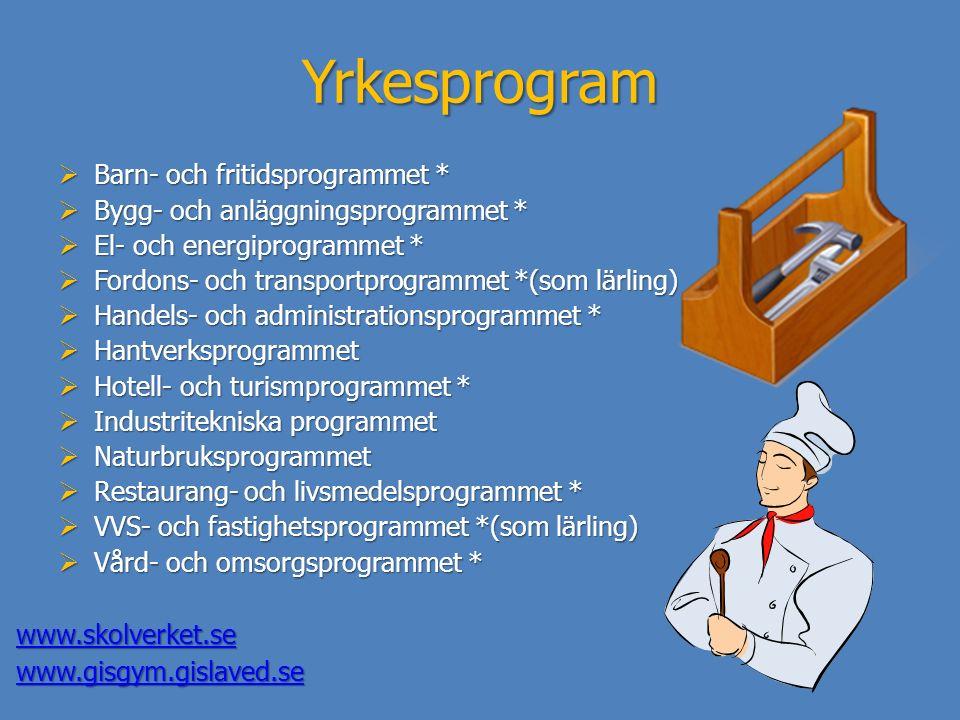 Yrkesprogram Barn- och fritidsprogrammet *