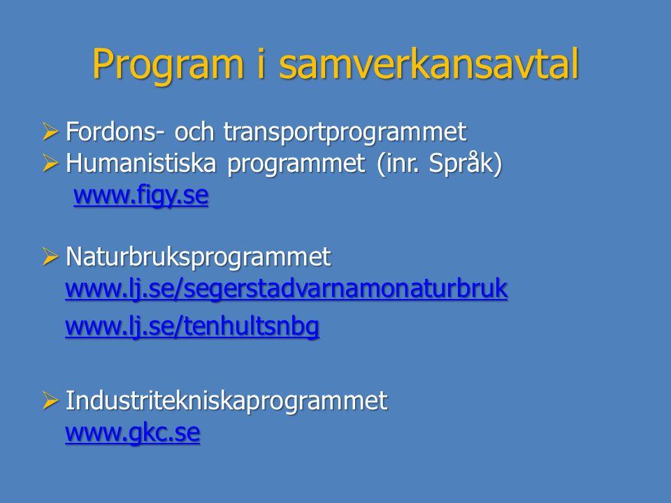 Program i samverkansavtal