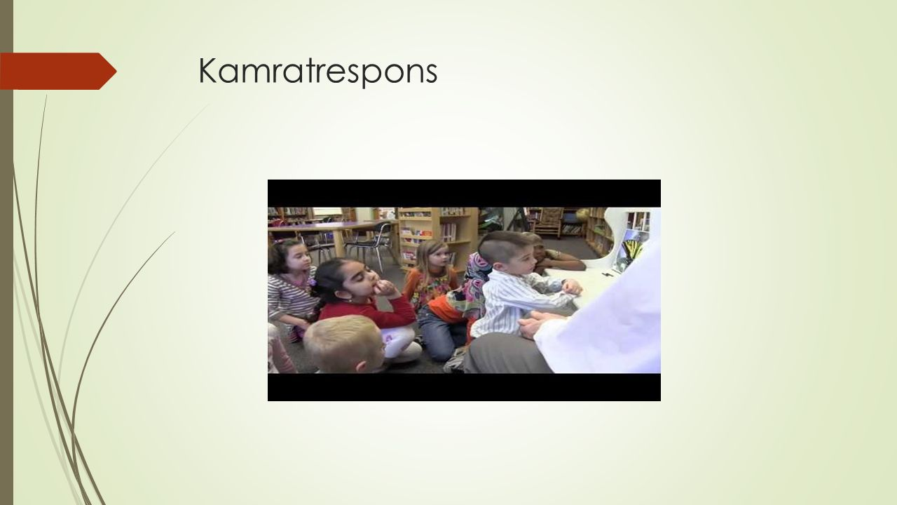 Kamratrespons