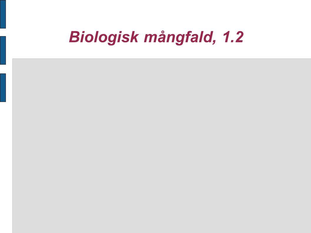 Biologisk mångfald, 1.2