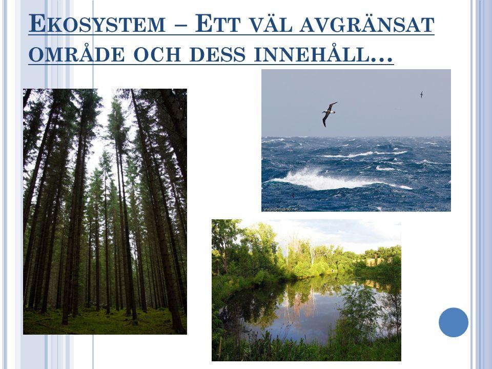 Ekosystem – Ett väl avgränsat område och dess innehåll…