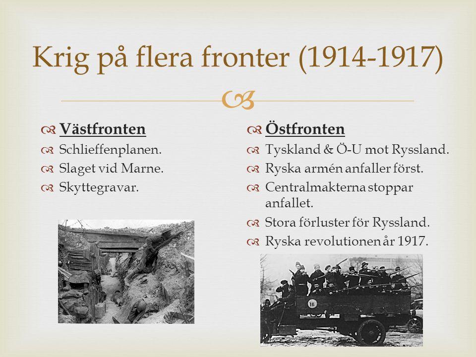 Krig på flera fronter (1914-1917)