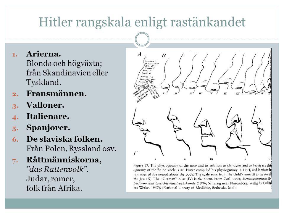 Hitler rangskala enligt rastänkandet
