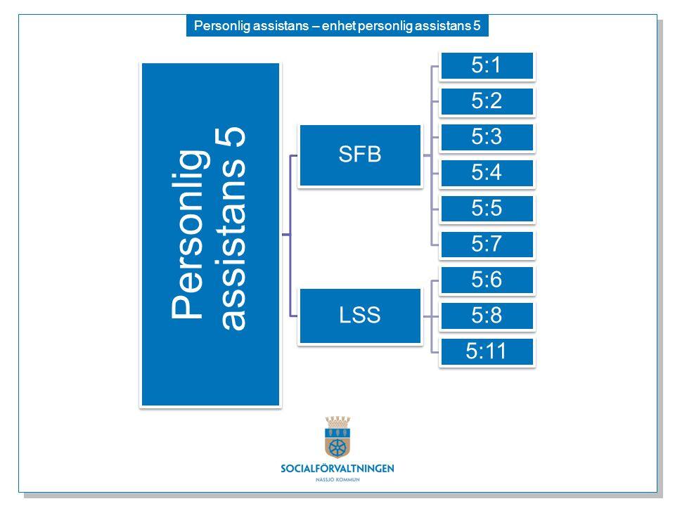 Personlig assistans – enhet personlig assistans 5