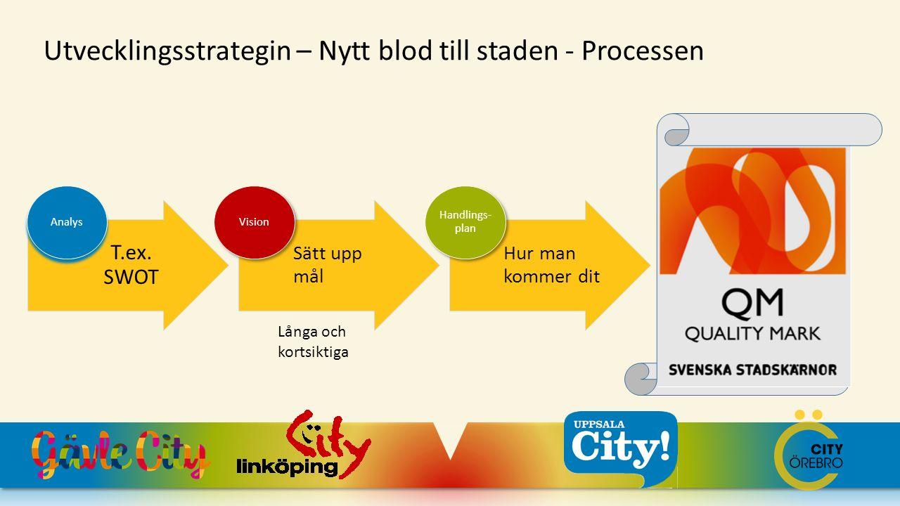 QM Utvecklingsstrategin – Nytt blod till staden - Processen T.ex. SWOT
