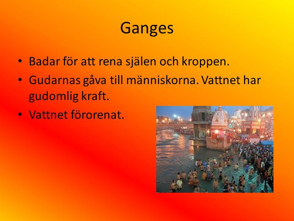 Ganges Badar för att rena själen och kroppen.