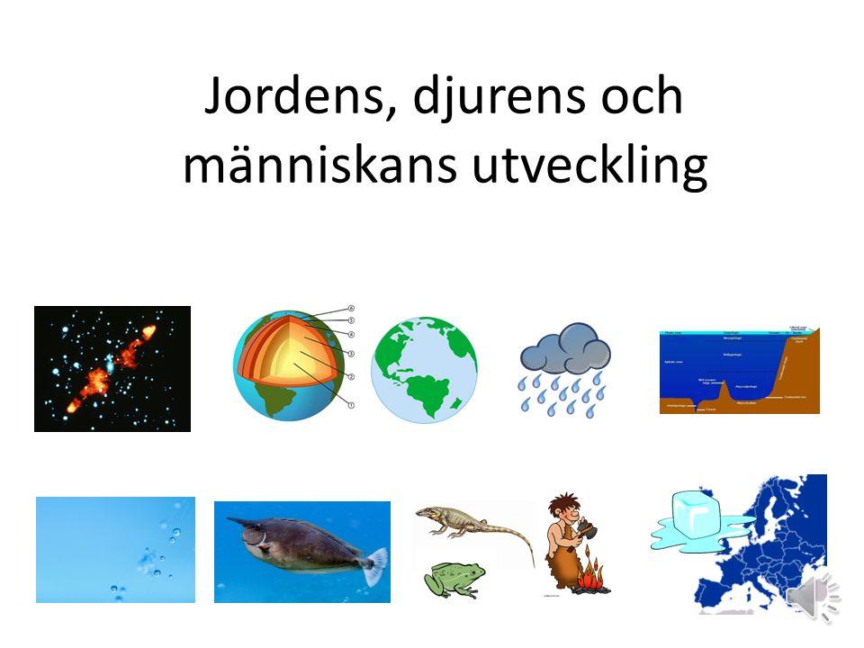 Jordens, djurens och människans utveckling