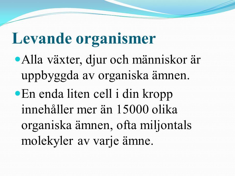 Levande organismer Alla växter, djur och människor är uppbyggda av organiska ämnen.