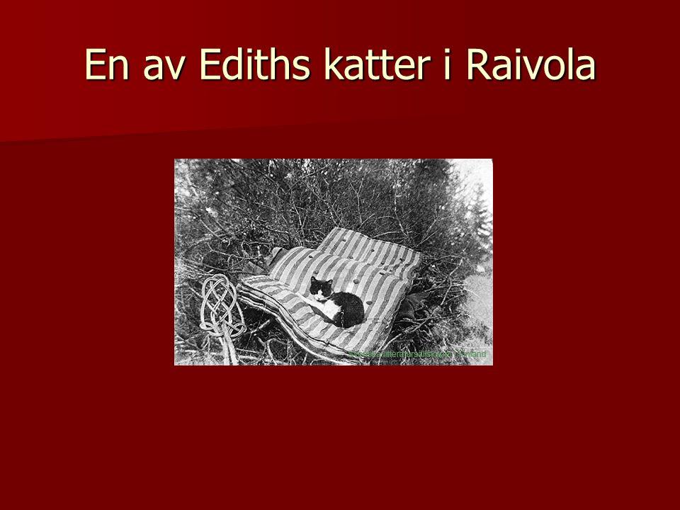 En av Ediths katter i Raivola