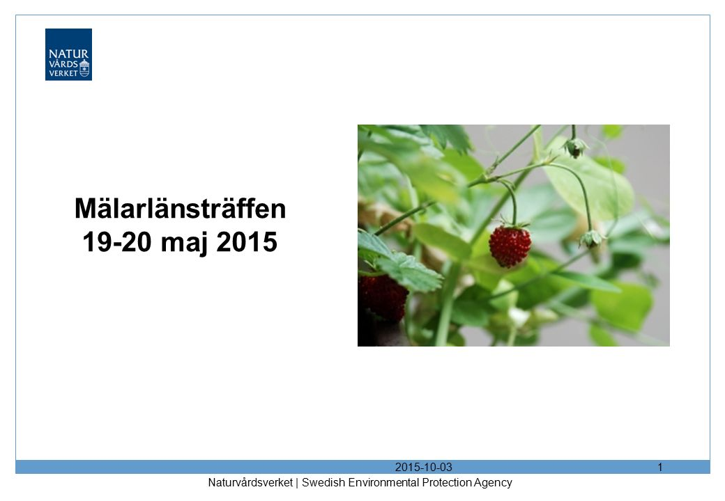 Mälarlänsträffen 19-20 maj 2015