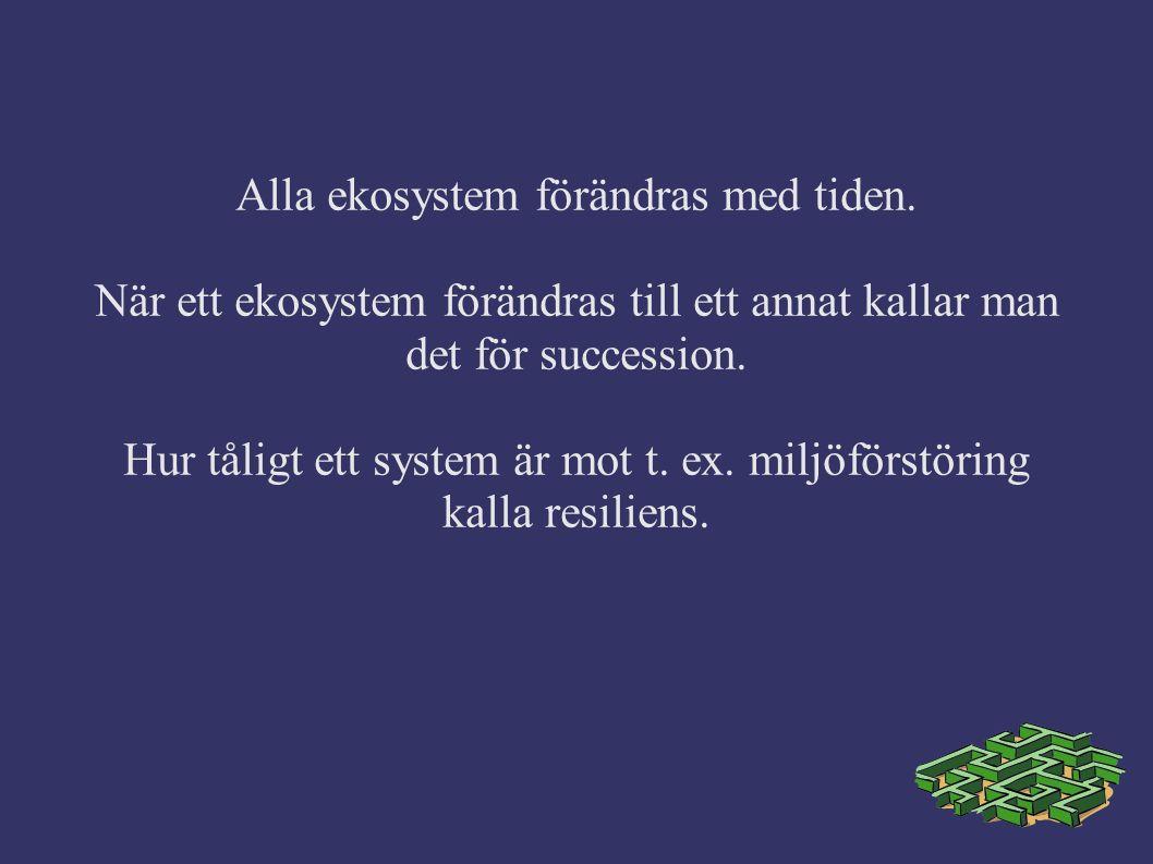 Alla ekosystem förändras med tiden.
