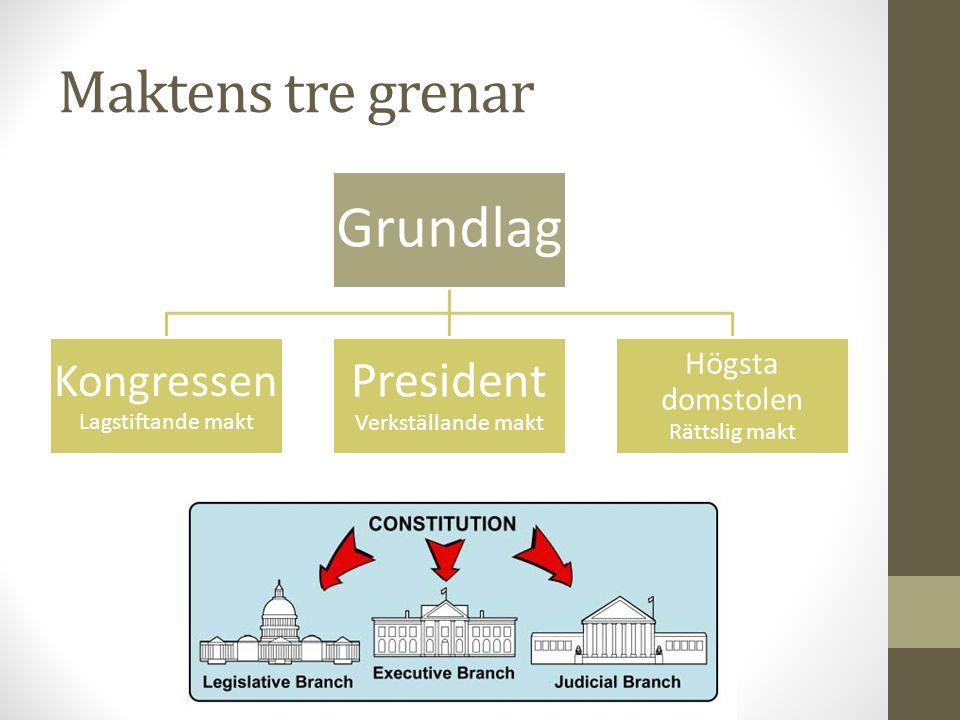 Maktens tre grenar President Verkställande makt