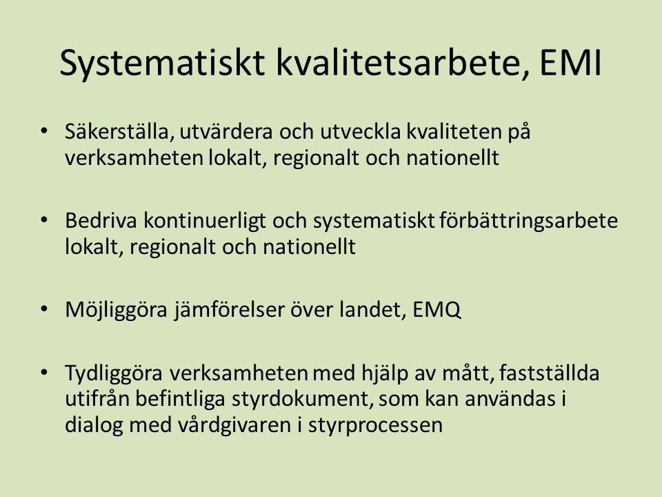 Systematiskt kvalitetsarbete, EMI