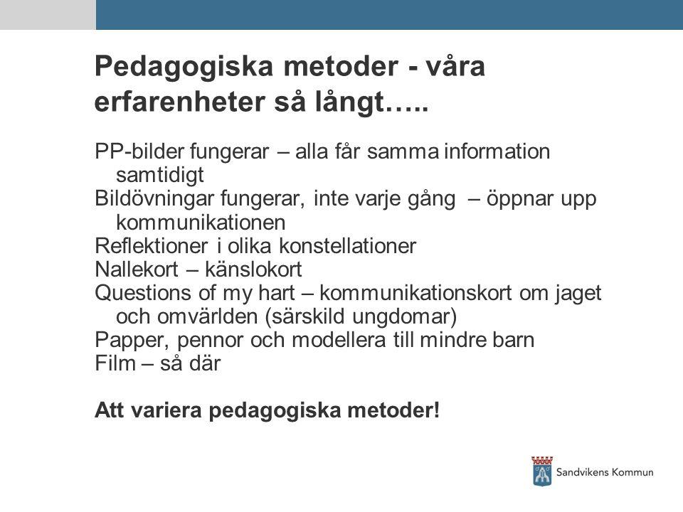 Pedagogiska metoder - våra erfarenheter så långt…..