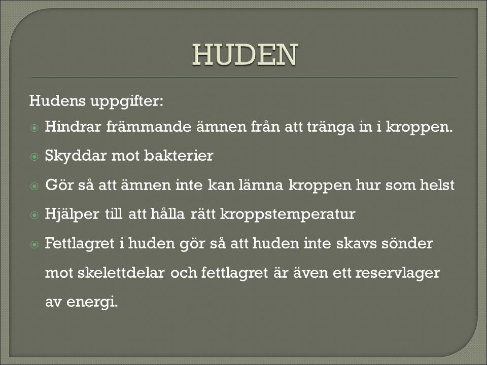 HUDEN Hudens uppgifter: