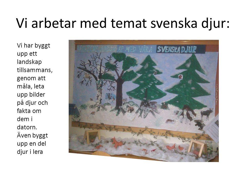 Vi arbetar med temat svenska djur: