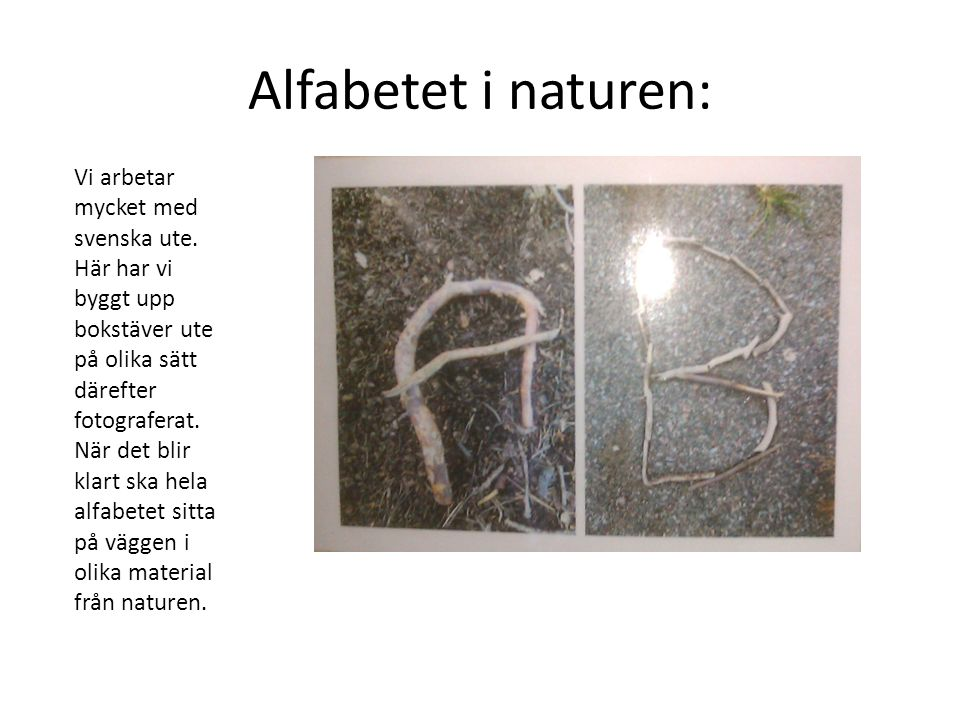 Alfabetet i naturen: