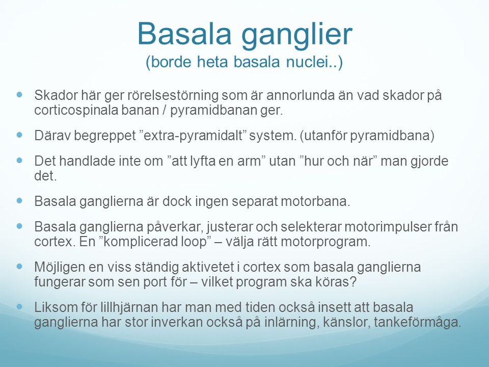 Basala ganglier (borde heta basala nuclei..)
