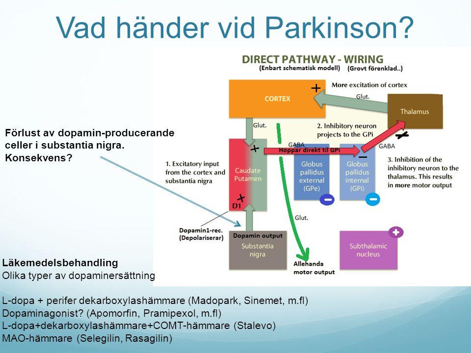 Vad händer vid Parkinson