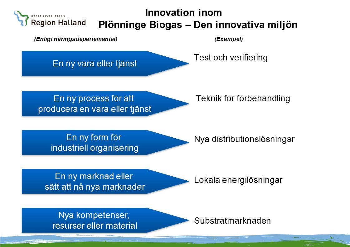 Innovation inom Plönninge Biogas – Den innovativa miljön (Enligt näringsdepartementet) (Exempel)