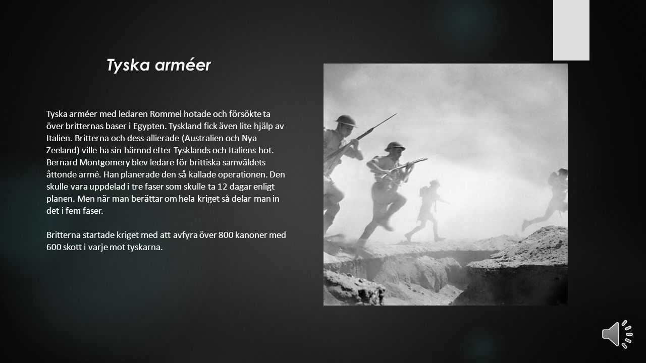 Tyska arméer