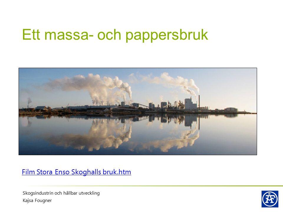 Ett massa- och pappersbruk