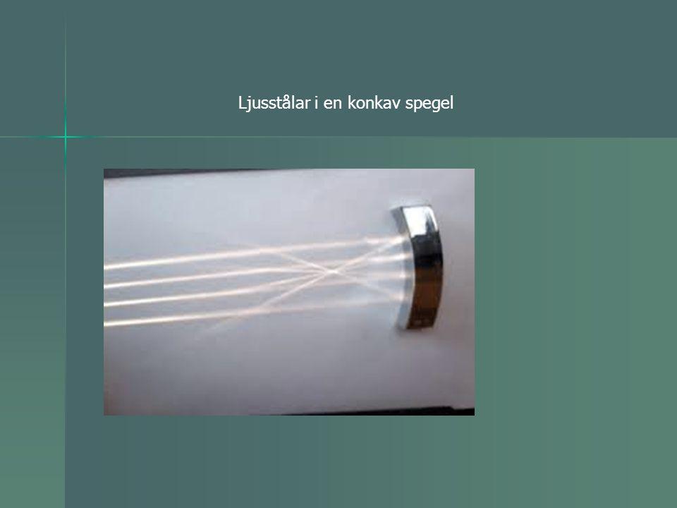 Ljusstålar i en konkav spegel
