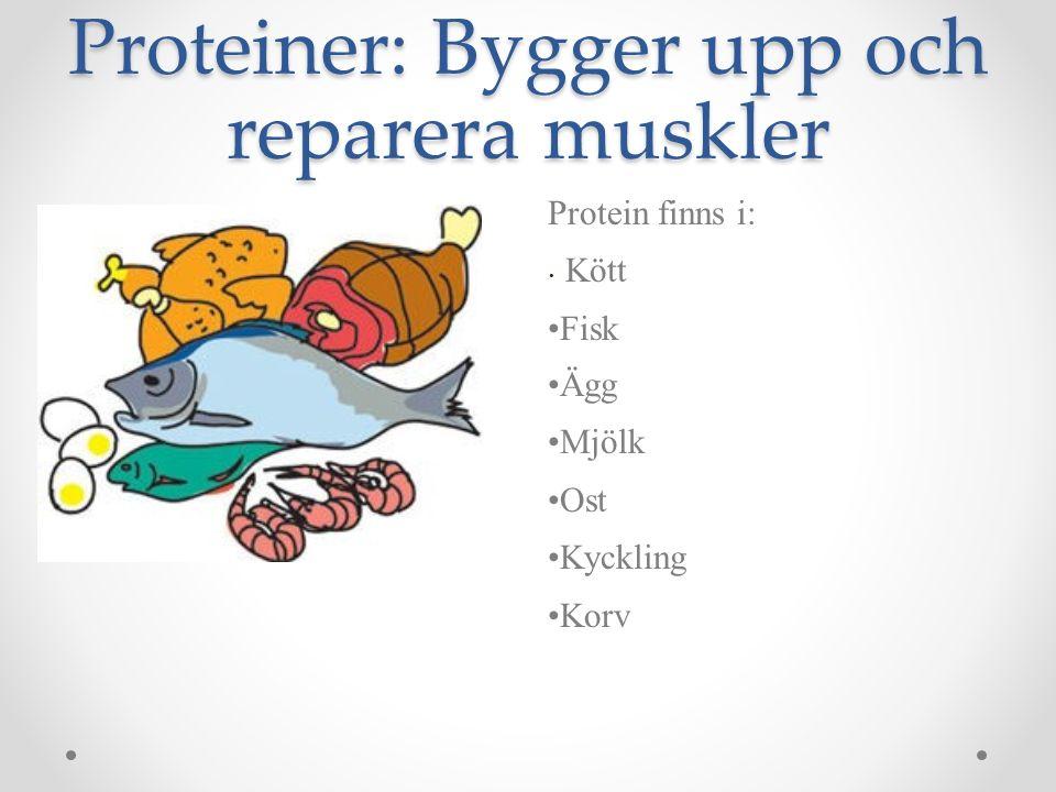 Proteiner: Bygger upp och reparera muskler