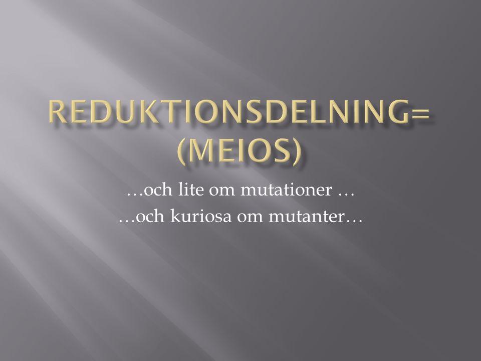 Reduktionsdelning= (Meios)