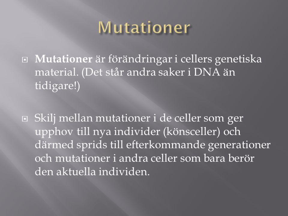 Mutationer Mutationer är förändringar i cellers genetiska material. (Det står andra saker i DNA än tidigare!)