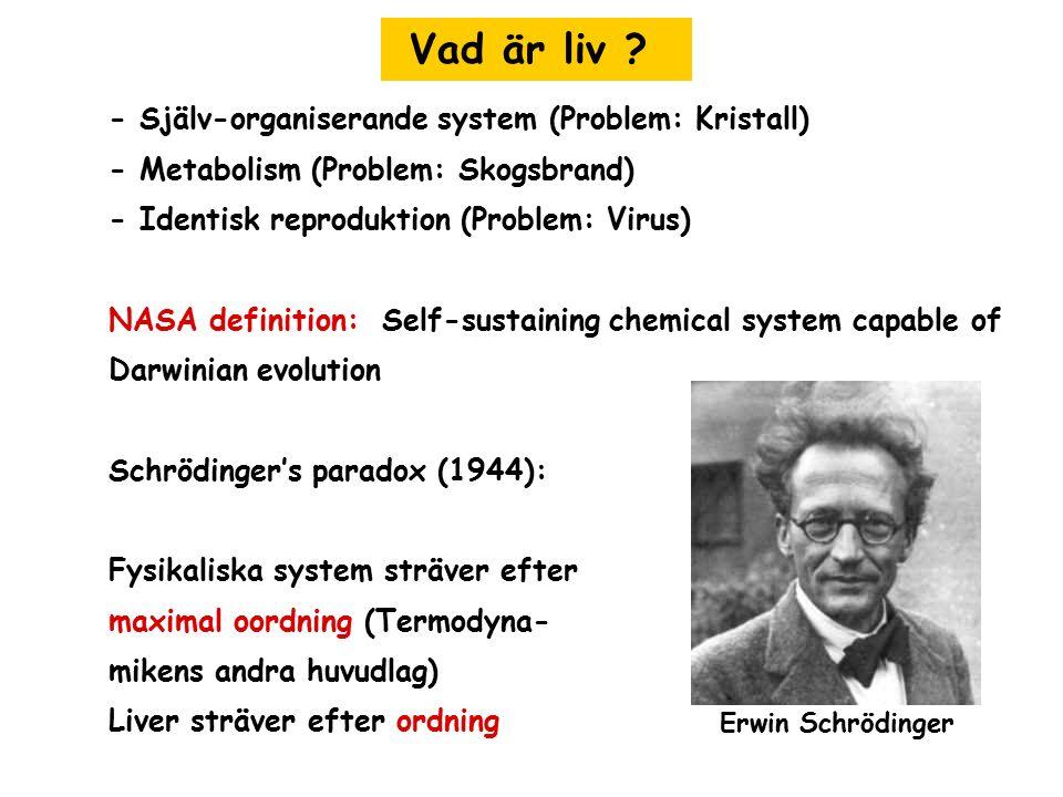Vad är liv - Själv-organiserande system (Problem: Kristall)