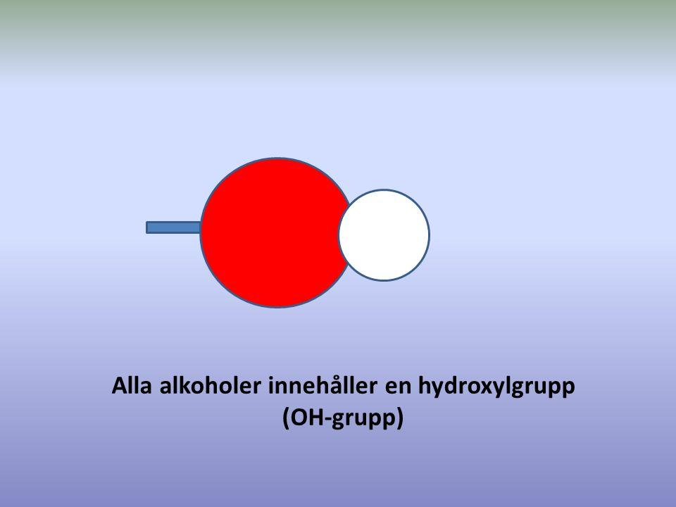 Alla alkoholer innehåller en hydroxylgrupp (OH-grupp)