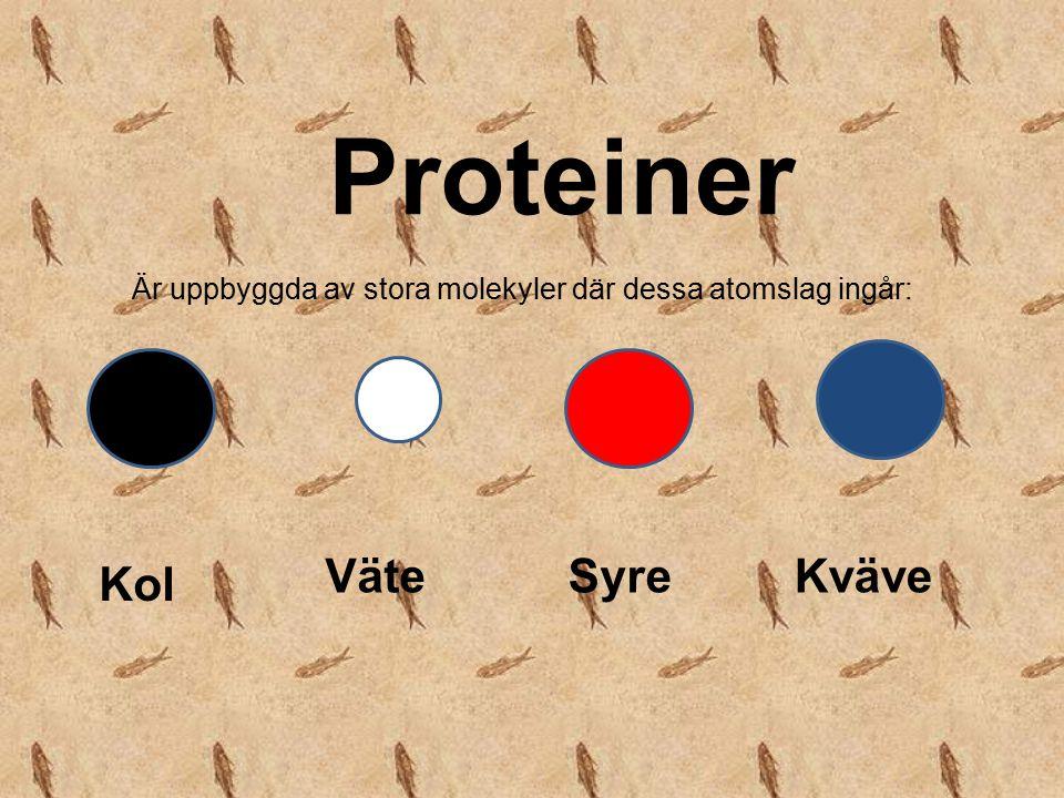 Proteiner Väte Syre Kväve Kol