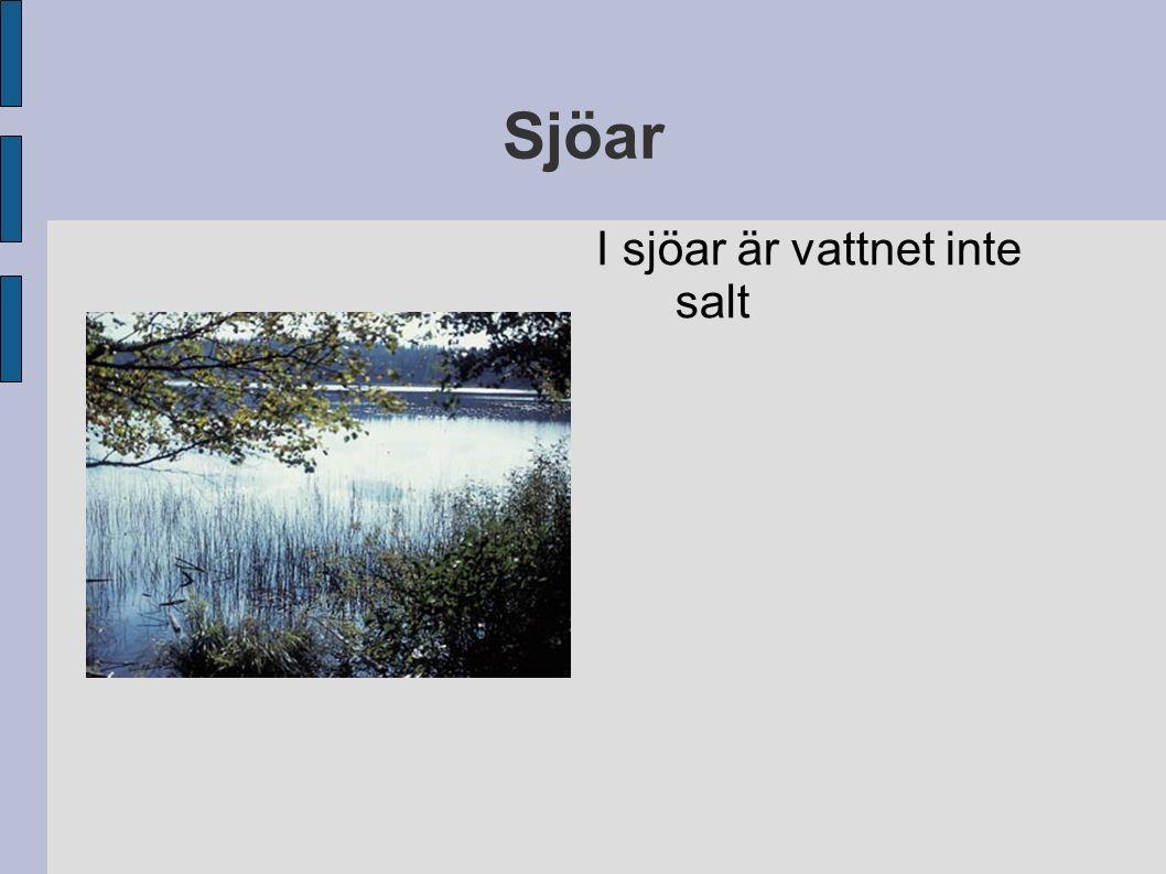 Sjöar I sjöar är vattnet inte salt