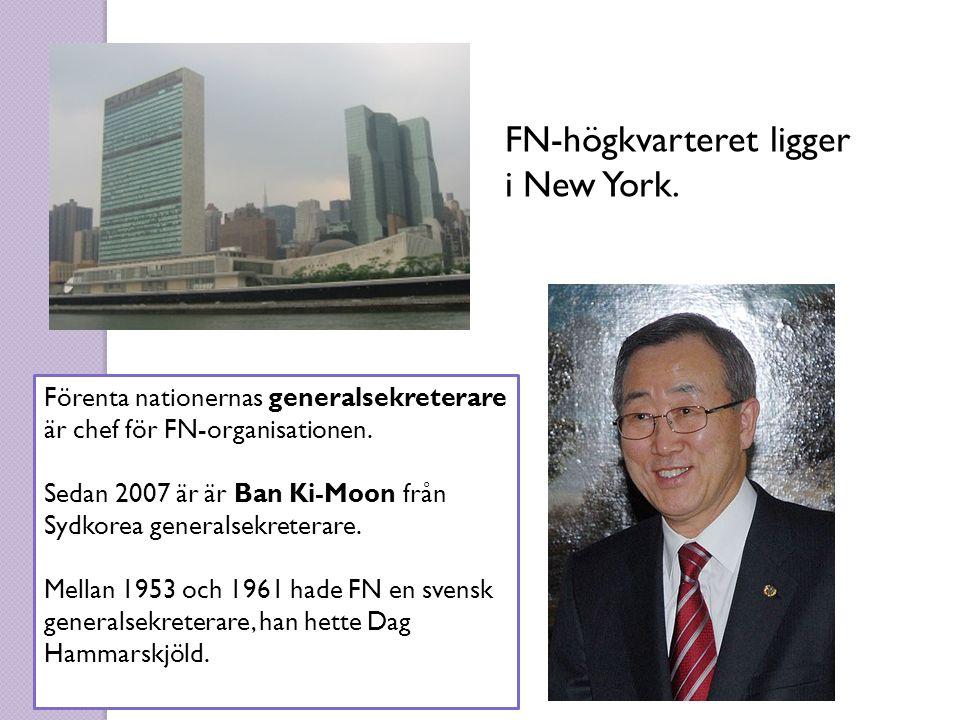 FN-högkvarteret ligger i New York.