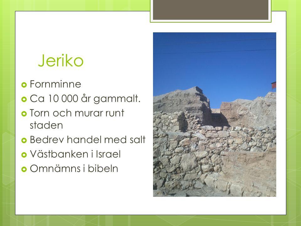 Jeriko Fornminne Ca 10 000 år gammalt. Torn och murar runt staden