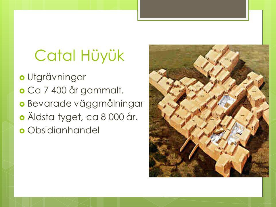 Catal Hüyük Utgrävningar Ca 7 400 år gammalt. Bevarade väggmålningar